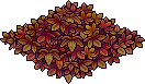 Autumn Forest Floor.png