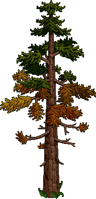 Autumn c20 tree4.png